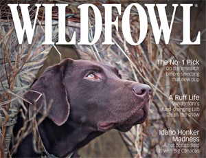 Wildfowl Magazine