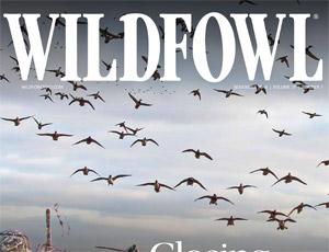 Wildfowl141100